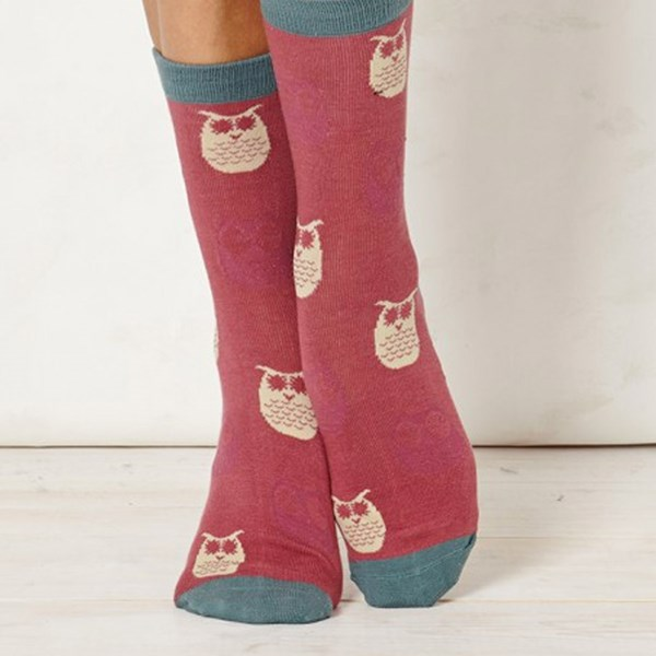 Ladies Owlet Blush Bamboo Socks