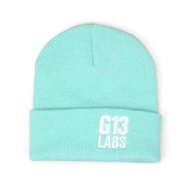 Side Trademark Embroidery Cuff Beanie Mint Green
